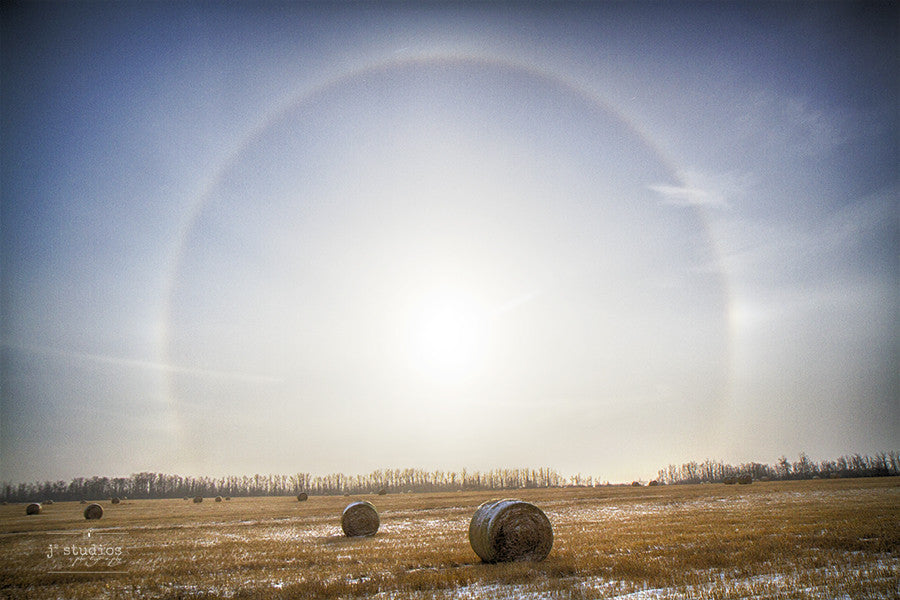 Sun Dogs and Bales of Hay is an art print of a snow covered countryside in Alberta.