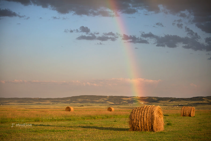 Picture of bales of hay in farmer's field with rainbow  arcing into it after a summer prairie storm.