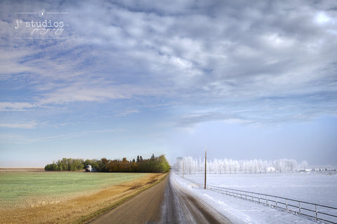 Picture of Composite of 4 Seasons along a prairie road outside of Edmonton Alberta.