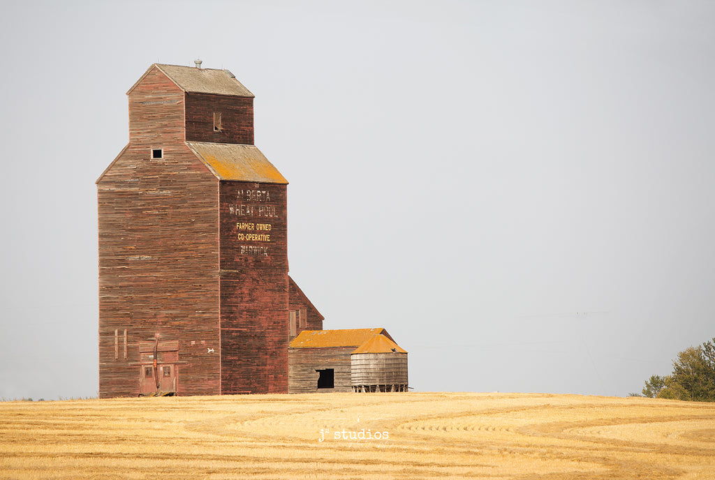 Picture of Grain Elevator sitting on edge of harvested wheat field in Warwick, Alberta.