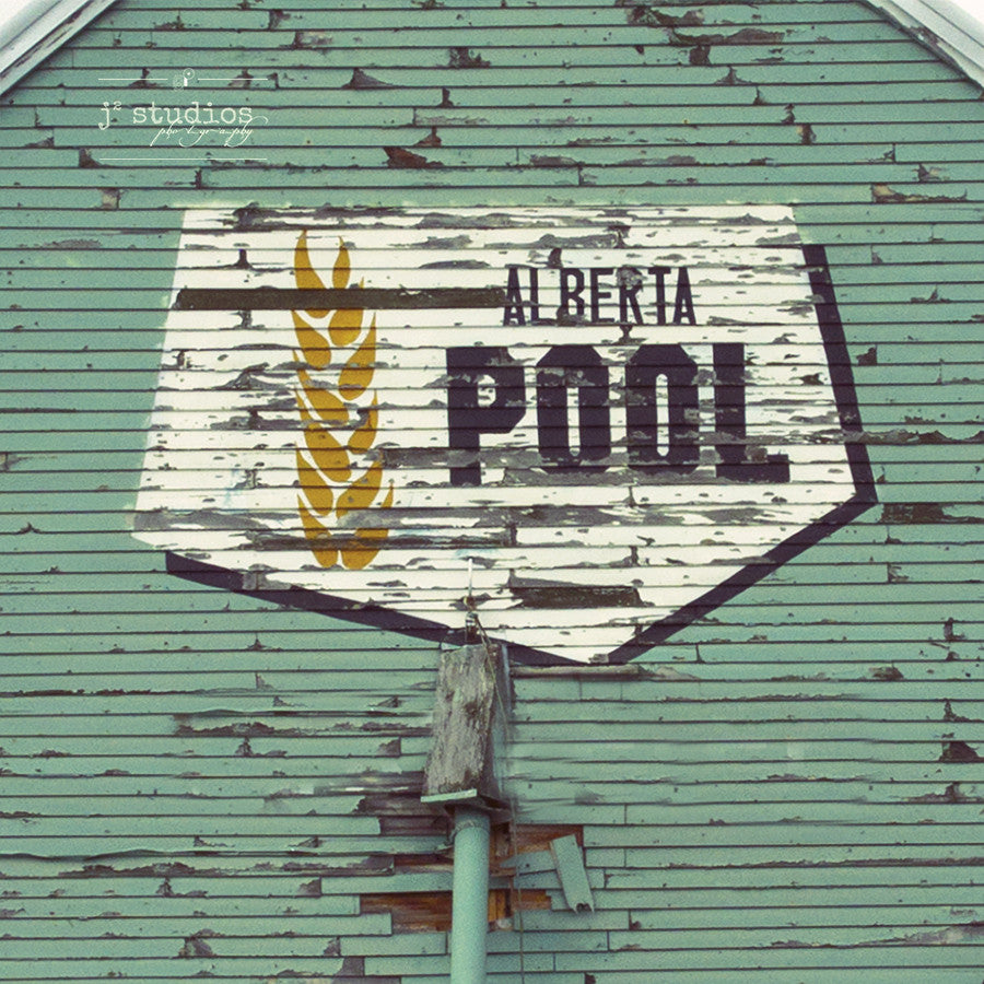 Picture of the iconic Alberta Wheat Pool logo on the side of a weathered wooden grain elevator.