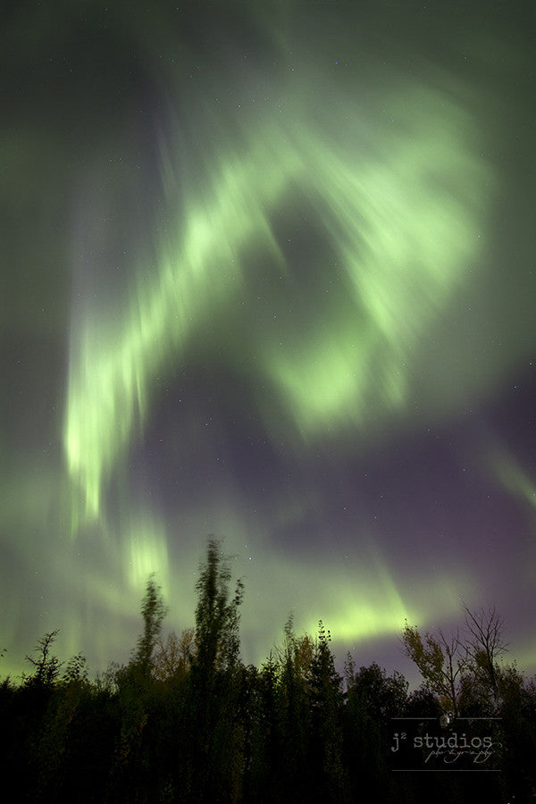 Cusps of Light is an art print of the northern lights over the prairie night skies.