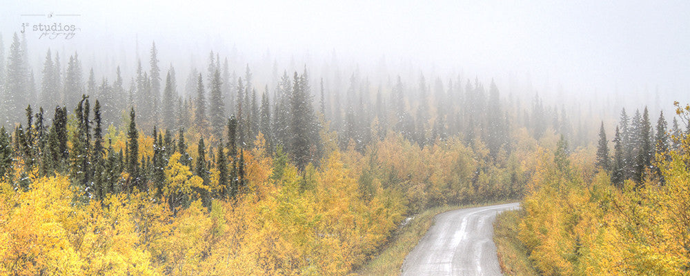 Foggy Autumn is an image of a country road in Yukon Territory.
