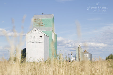 Glimpse of Mayerthorpe is an image of grain elevators framed by strands of wheat. Heritage Photography.