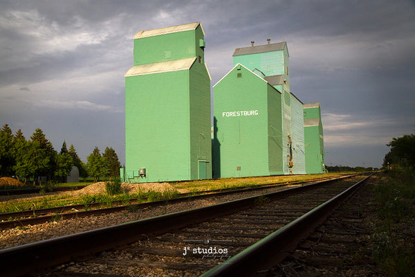 Gorgeous image of the trio of grain elevators that comprise the Forestburg skyline.