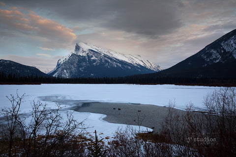 Image of the famous and iconic Rundle Mountain in Banff National Park looming over the shores of Vermillion Lakes. Postcard quality art print of the Canadian Rockies.
