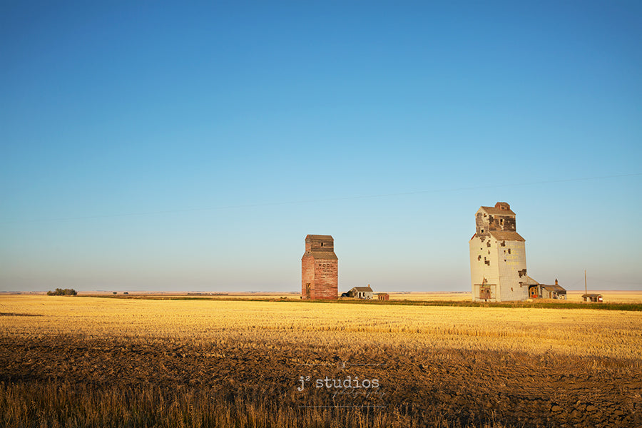 Art print of vast Saskatchewan Prairies featuring wheat field and a pair of weathered  wooden Grain Elevators.