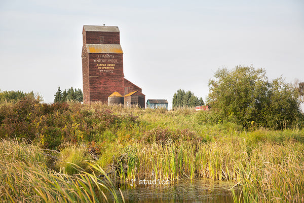 Image of the Warwick grain elevator framed by water, cat tails, and a farmers field. Beautiful and natural prairie moment. Alberta photography.