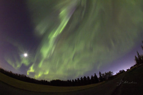 The Light Above is an art print of the Northern Lights near Edmonton, Alberta.