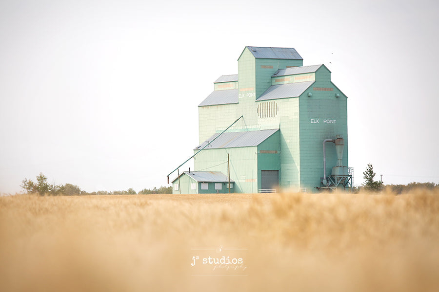Sentimental inspired image of the Elk Point grain elevator standing across a wheat field. Dreamy prairies photograph.