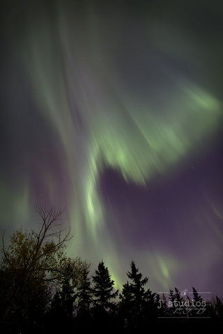 Waves is an art print of Northern Lights over trees in a countryside near Edmonton.