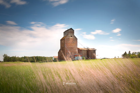 Soft and Peaceful art print of wild grass blowing softly by the fields of Kingman. Best Grain Elevator images of Alberta. Iconic Canada. Prairie Photography.