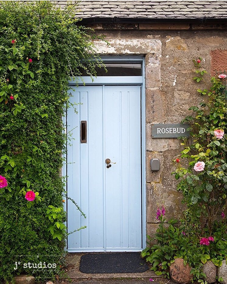 Image of Baby Blue Door framed by Rose vines. Scottish charm seen in a little village in Scotland.
