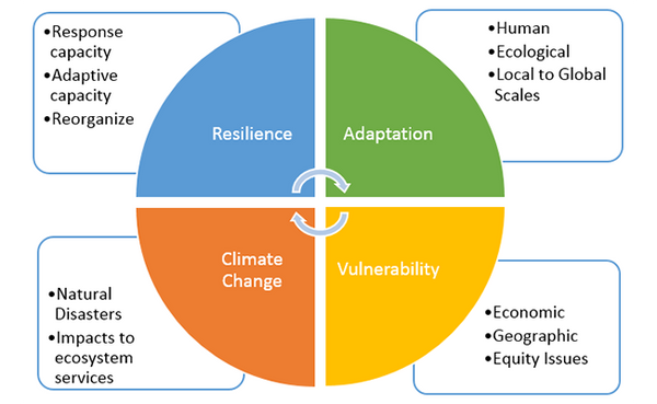 Resiliency and a Thriving Ecosystem