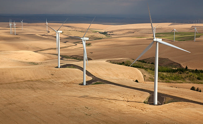 Wind And The Renewable Power It Yields