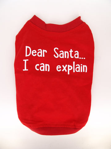 Dear Santa... I can explain!
