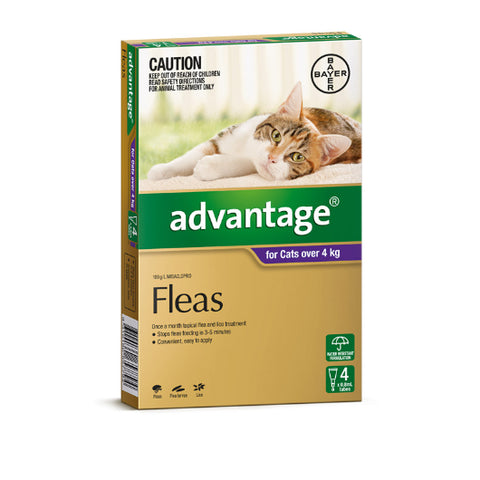 Advantage Flea Treatment for Cats - All sizes