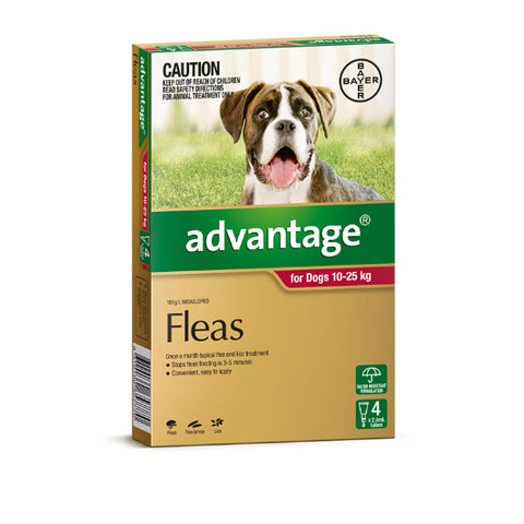 Advantage Flea Treatment for Dogs - All sizes