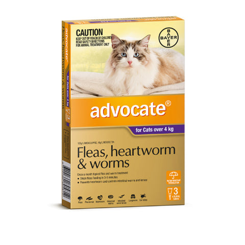 Advocate Flea and Worm Treatment for Cats - All sizes