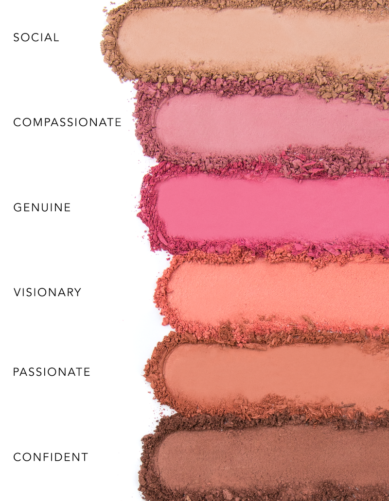 """You are Brilliant"" PRO Blush Palette"