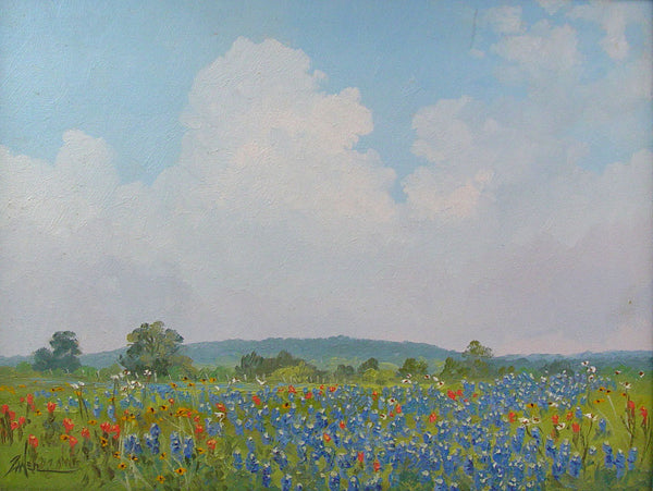 Texas Bluebonnets By Bill Zaner