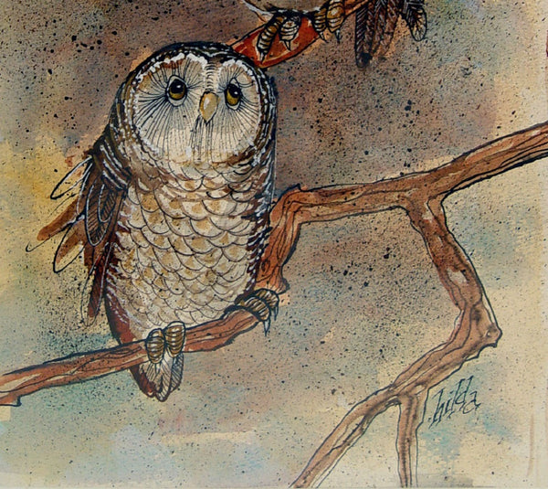 Curious Owls Watercolor