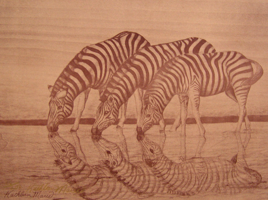 Zebra Reflections by Kathleen Marie