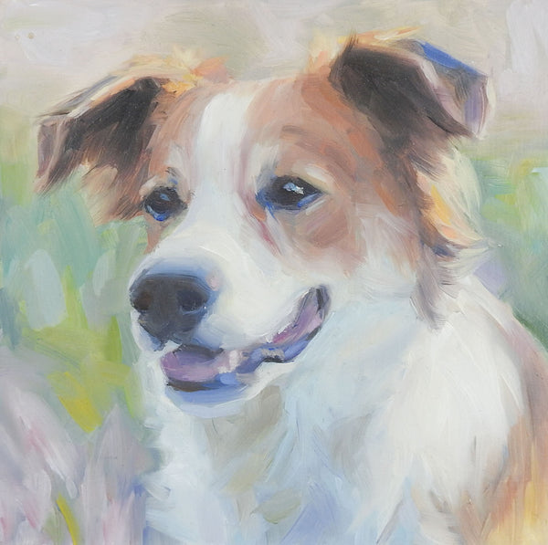 Portrait Painting of Collie Mix Dog