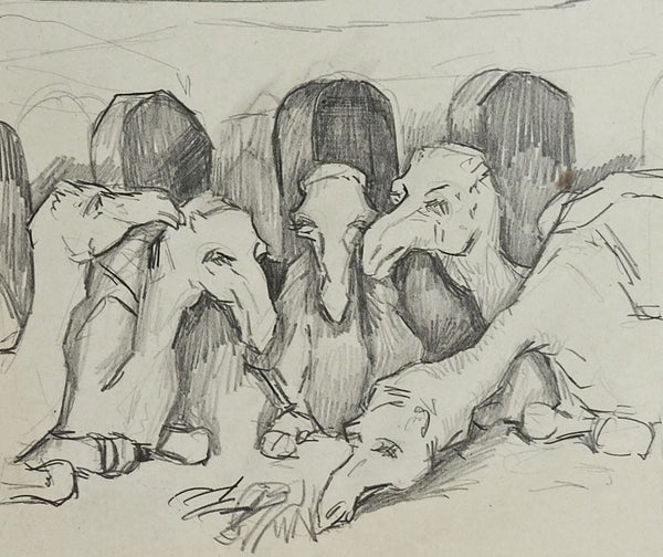 Group of Camels by George Baer Drawing