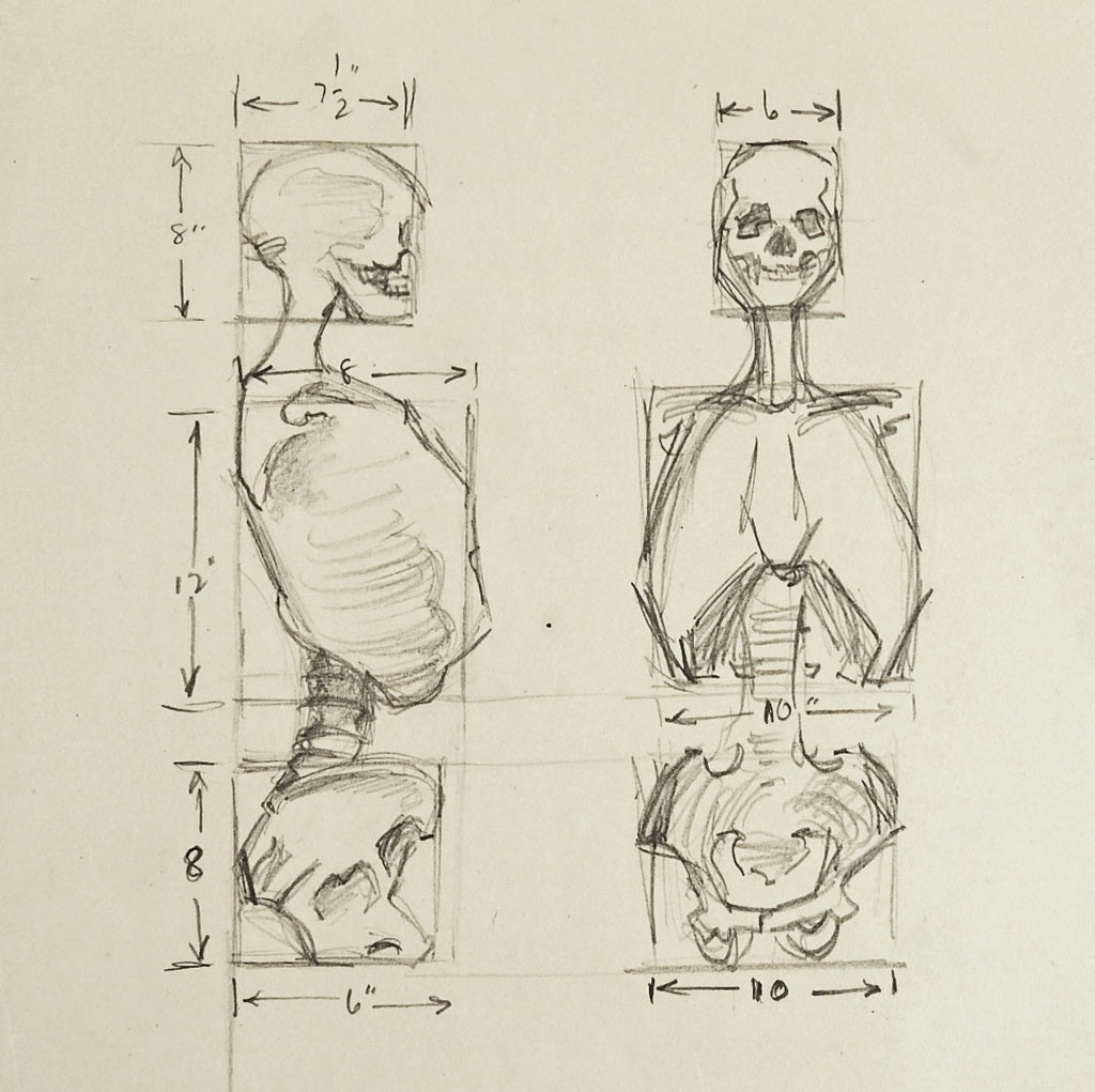 Anatomy Skeleton Study Drawing – Artifax antiques & design