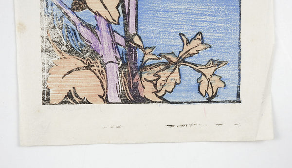 1919 Woodcut Print Seaside Wildflowers