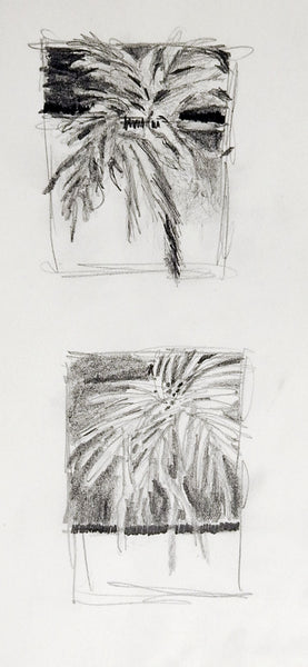 Tiny Foliage Pencil Study Drawings
