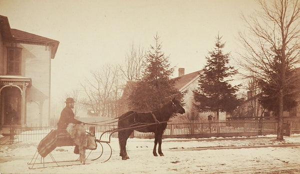 Horse & Sleigh Antique Photograph