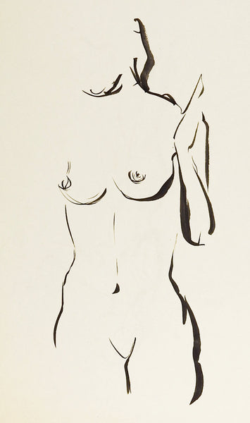 Nude Pen & Ink Drawing