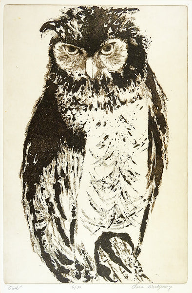 Owl Etching By Clara Montgomery