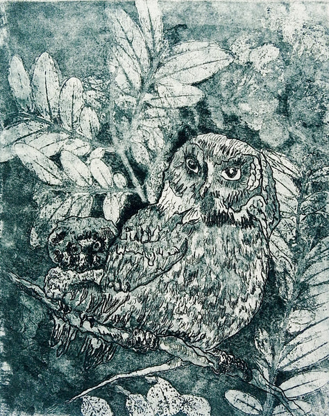 Owls Etching