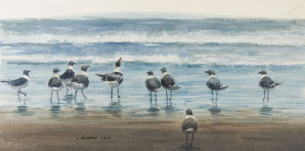 Laughing Gulls At The Beach Watercolor Painting