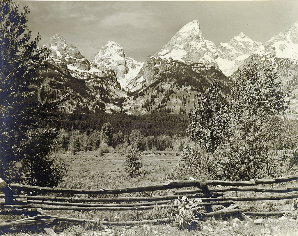 1950's Vintage Photograph Of Grand Teton's