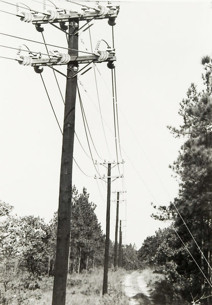 Powerline Road Photograph