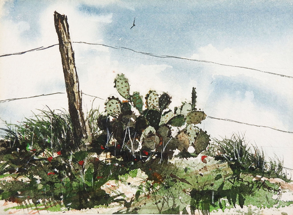 Cactus Watercolor Painting by Jerry Weers