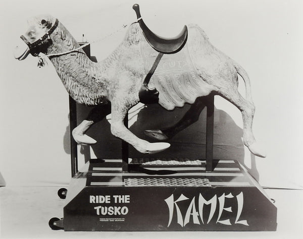 1950's Tusko Kamel Kiddie Ride Photograph