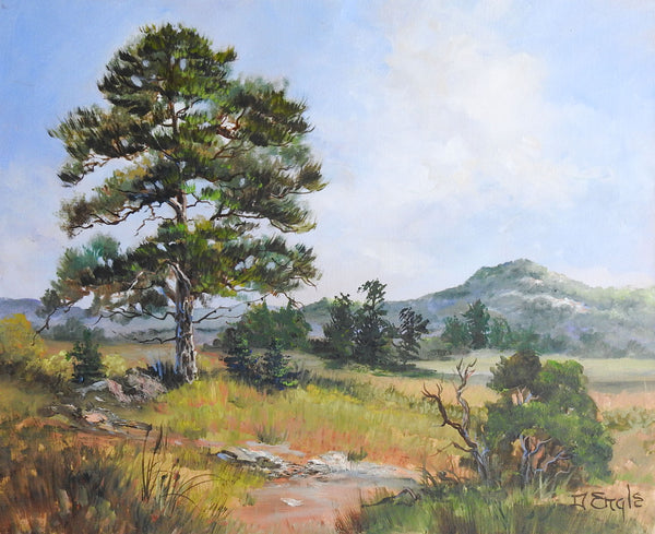 HIll Country Landscape Painting