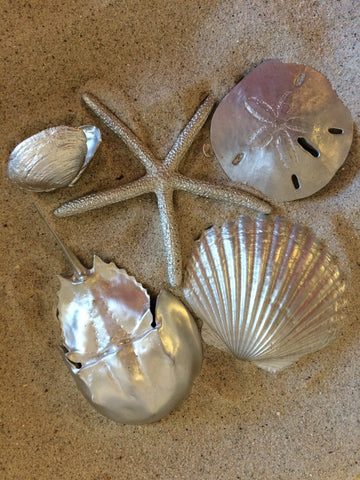 Solid Pewter Seashell Accents