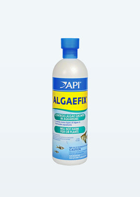 API AlgaeFix water from API products online in Dubai and Abu Dhabi UAE