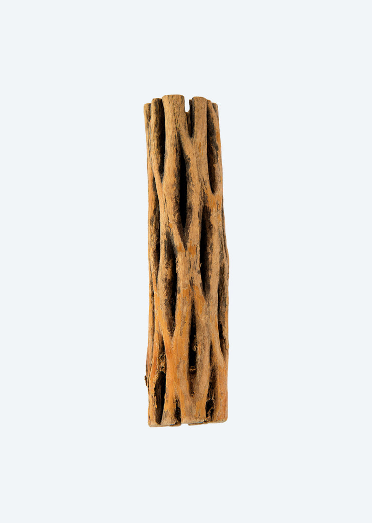 Awood Cholla Wood