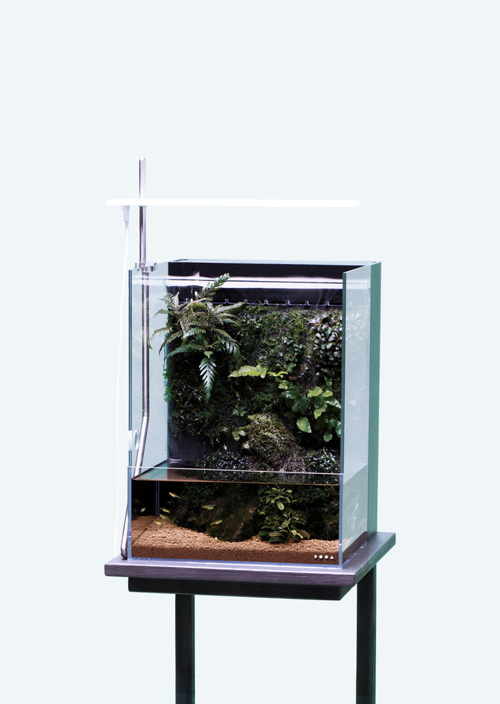 DOOA System Terra 30 Starter Kit aquarium from ADA products online in Dubai and Abu Dhabi UAE