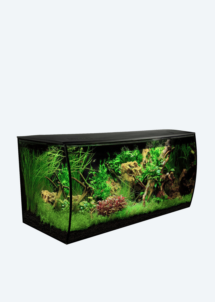 FLUVAL Flex Aquarium (123 L Black)