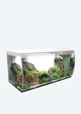FLUVAL Flex Aquarium (123 L White)