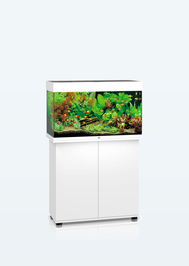 JUWEL Rio 125 LED aquarium from Juwel products online in Dubai and Abu Dhabi UAE