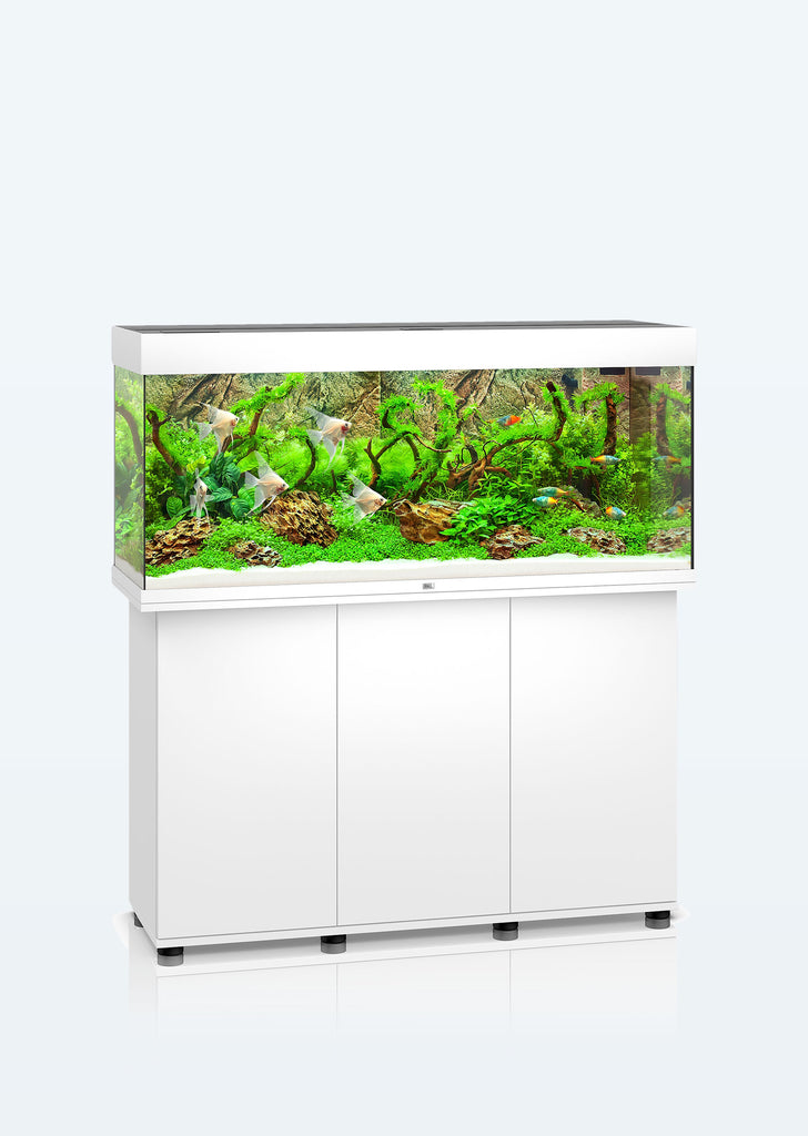 JUWEL Rio 240 LED aquarium from Juwel products online in Dubai and Abu Dhabi UAE